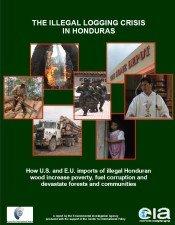 The Illegal Logging Crisis in Honduras