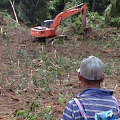 Alert: End intimidation & forest destruction in Muara Tae