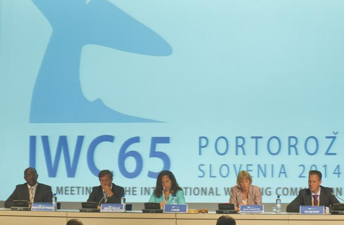 IWC65 opening ceremony in Slovenia (c) IWC