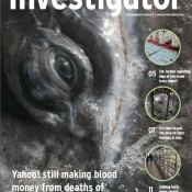 The Autumn 2012 issue of Investigator is now available