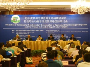 The Kunming workshop in progress (c) EIA