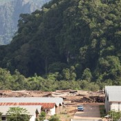 Laos' forests still falling to 'connected' businesses