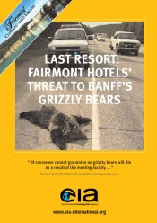 Last Resort: Fairmont Hotels – Threat to Banff's Grizzly Bears