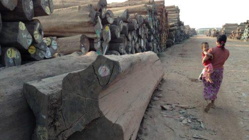 Log yard in Myanmar (c) EIA