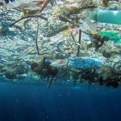 Plan to cut 50% of marine litter from EU waters by 2030