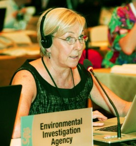 EIA's Elephants Campaign head Mary Rice makes an intervention at CITES