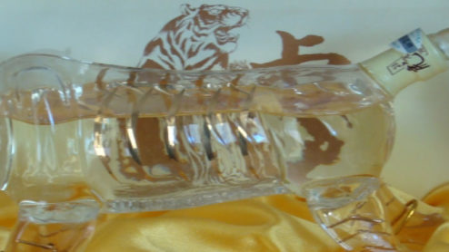A tiger-shaped bottle of bone strengthening wile for sale, Qinhuangdao, China