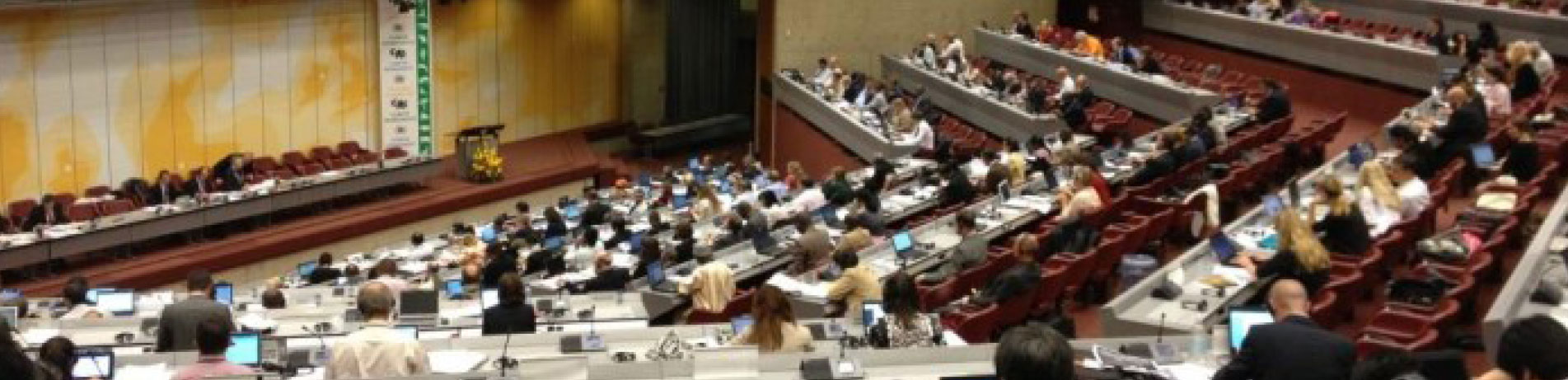 65th meeting of the Standing Committee to the Convention on International Trade in Endangered Species (CITES), Geneva