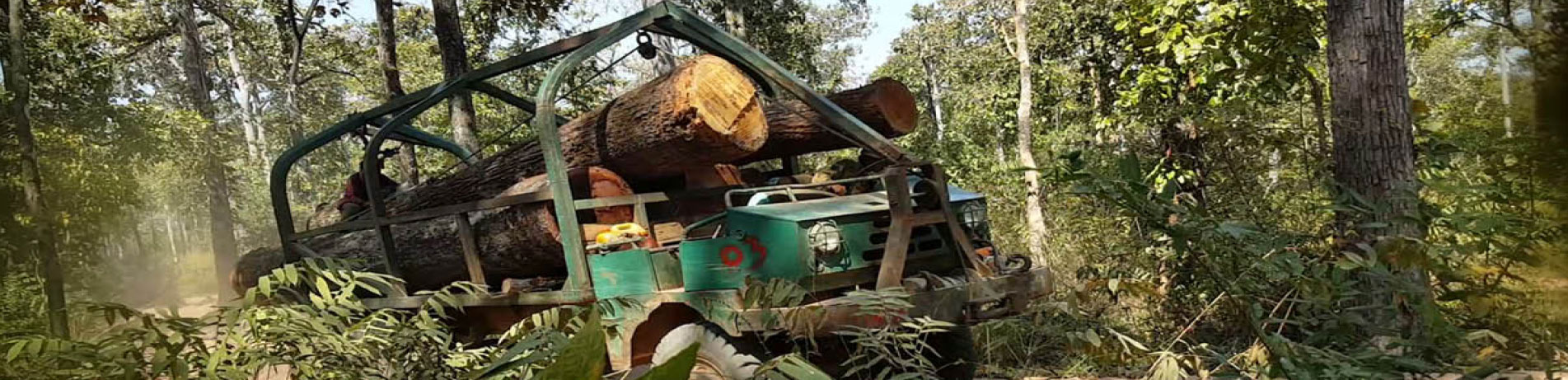 Truck carrying illegal timber, Cambodia