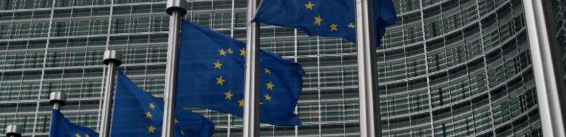 EU flags, Brussels, Belgium