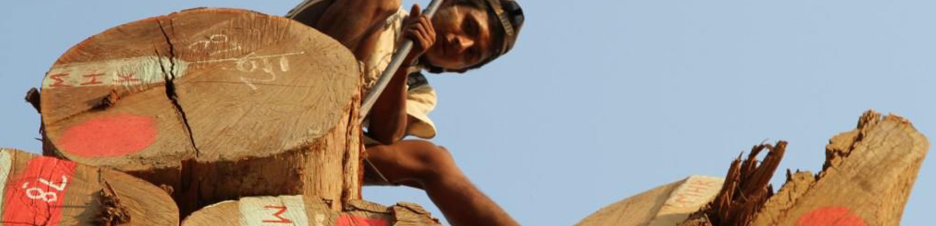Worker in a log yard, Myanmar