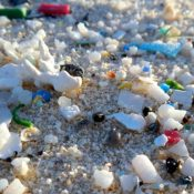 EU Parliament backs microplastic bans to tackle plastic pollution!