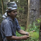 Indonesia: Indigenous peoples now rightfully own their lands