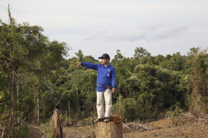 Masrani stands on an Ulin stump in the Dayak Benuaq's customary land, cleared by palm oil firm PT Munte Wani Jaya Perkasa last year (credit: EIA/Tom Johnson)