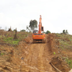 A digger drives on a dirt track through deforested land