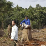 Giving Muara Tae the skills to fight off palm oil threat