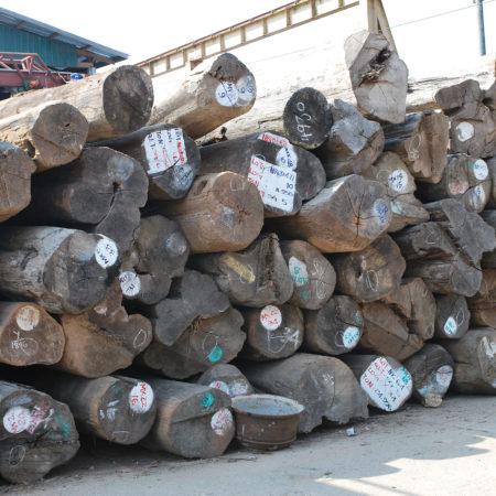 https://eia-international.org/wp-content/uploads/Myanmar-Pile-of-teak-logs.jpg