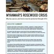 Myanmar's Rosewood Crisis