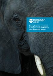 Taking Stock – An assessment of progress under the National Ivory Action Plan process