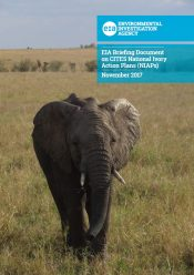 EIA Briefing Document on CITES National Ivory Action Plans (NIAPs)