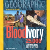 CITES ivory trade system is flawed and drives poaching