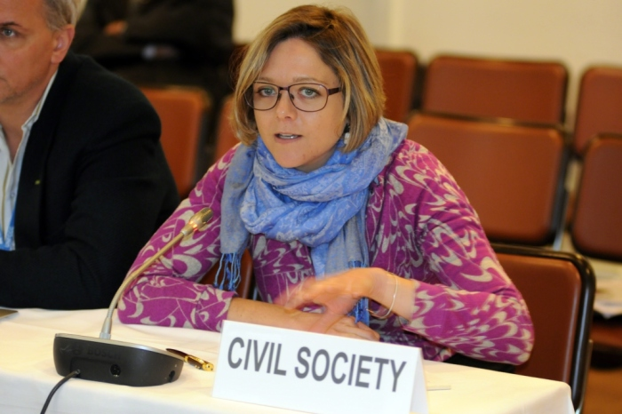 Natasha Hurley at EIA's Natasha Hurley addresses the Bonn Climate Change Conference last week