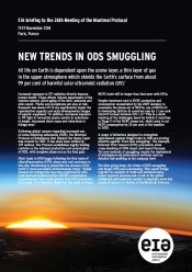 New Trends in ODS Smuggling