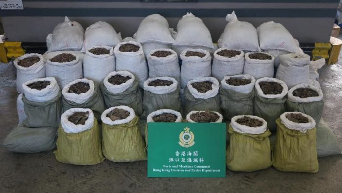 Pangolin scales seized by Hong Kong Customs, May 2017