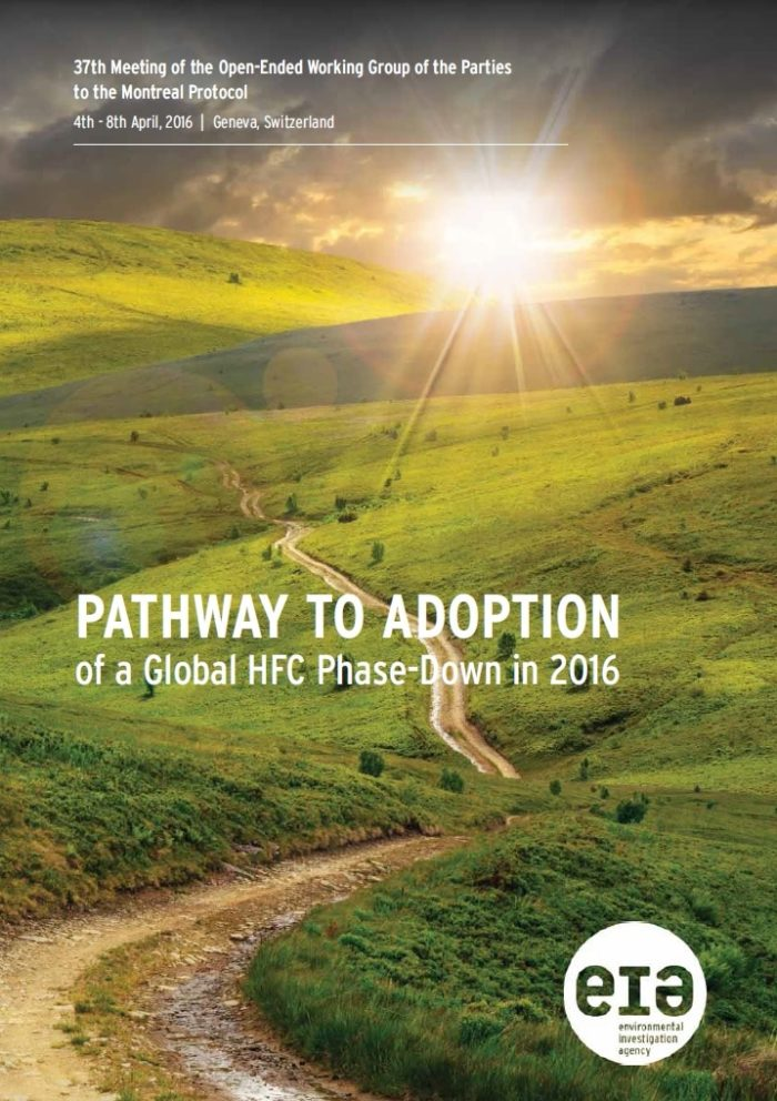Pathway to Adoption cover