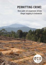 Permitting Crime: How palm oil expansion drives illegal logging in Indonesia