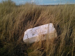 Polystyrene box on Blakeney Marshes © J Lonsdale