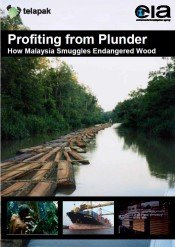Profiting from Plunder