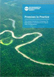 Promises in Practice