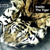 Tiger film scoops prestigious festival award