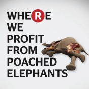 Action alert: Tell Rakuten to end elephant ivory sales