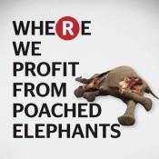 Action alert: Tell Rakuten to end elephant ivory sales