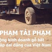 Repeat Offender report now available in Vietnamese