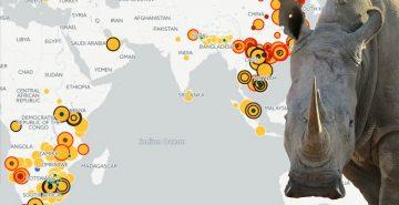 Rhino seizures map Sept 2017 w rhino