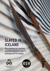 Slayed in Iceland: The commercial hunting and international trade in endangered fin whales