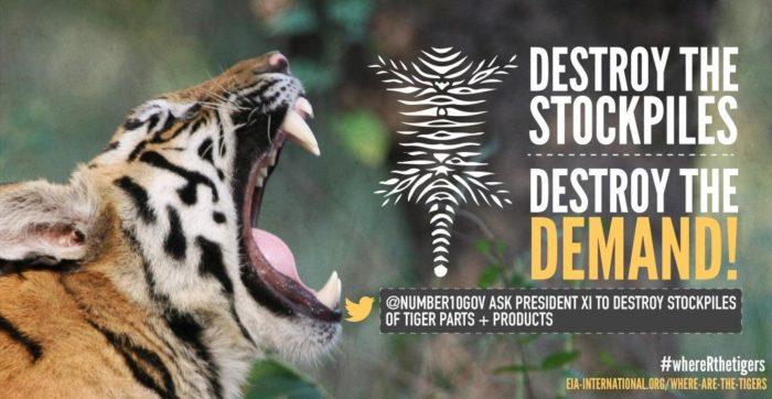 Tiger stockpiles graphic, UK version