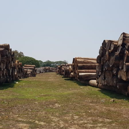 https://eia-international.org/wp-content/uploads/Timber-seized-in-Kachin-in-May-2020-scaled.jpg