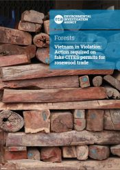 Vietnam in Violation: Action required on fake CITES permits for rosewood trade