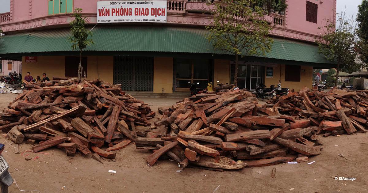 Vietnam rosewood