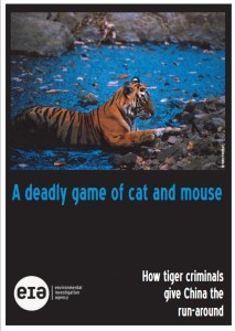 A deadly game of Cat & Mouse