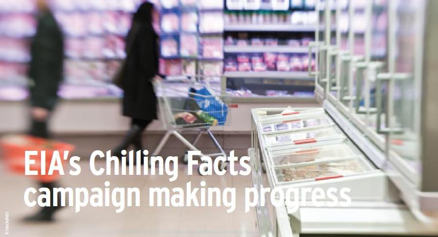 Chilling Facts 2011, where did your local supermarket come? Credit istock