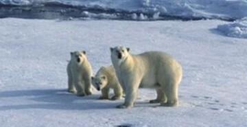 climate blog