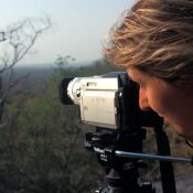 International recognition for Debbie's tireless efforts to give wild tigers a future