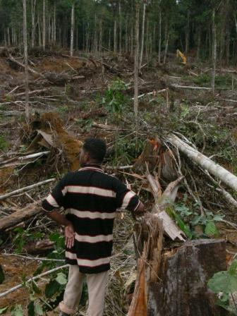 Man in destroyed forest