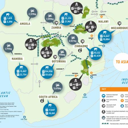 https://eia-international.org/wp-content/uploads/ews-africa-map-1920x1679.png