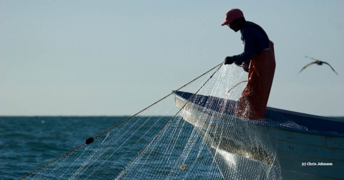 gillnet fishing, Mexico